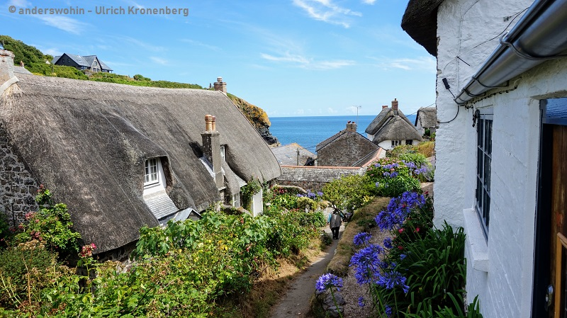 Cadgwith   Idylle im alten Fischerdorf   Cornwall