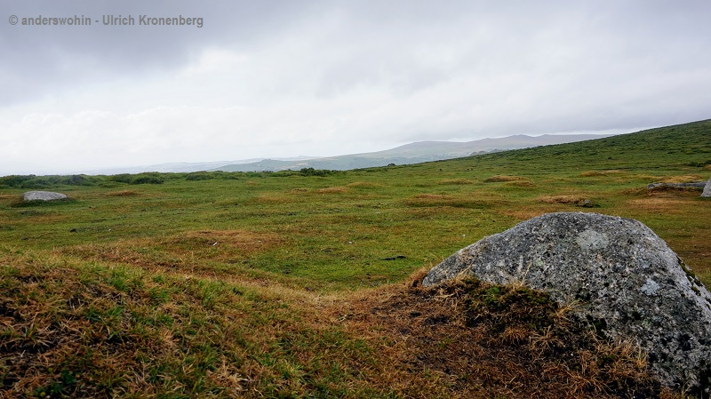"""Im Dartmoor auf der Suche nach dem """"Hund von Baskerville"""""""